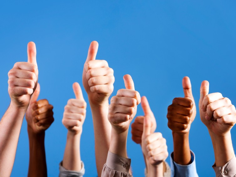 Reviews – What our clients are saying